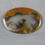 Priday Plume Agate Cabochon 220
