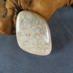 Indonesian Fossil Coral Cabochon 67
