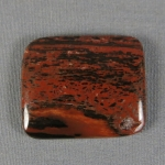 Petrified Wood Cabochon 11