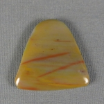 Petrified Wood Cabochon 12