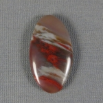 Petrified Wood Cabochon 14