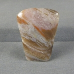 Petrified Wood Cabochon 19