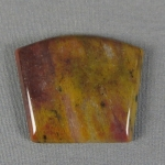 Petrified Wood Cabochon 23