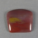 Petrified Wood Cabochon 24