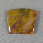 Petrified Wood Cabochon 29