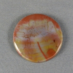 Petrified Wood Cabochon 30