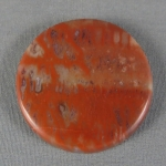 Petrified Wood Cabochon 33