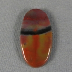 Petrified Wood Cabochon 36