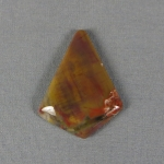 Petrified Wood Cabochon 38