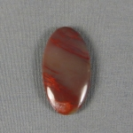 Petrified Wood Cabochon 39