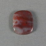 Petrified Wood Cabochon 40