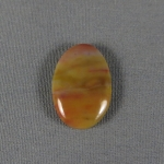 Petrified Wood Cabochon 46