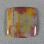 Petrified Wood Cabochon 5